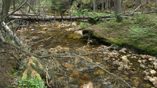 hidden stream in rocky mountains