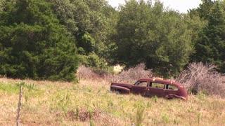 junk car in an open field