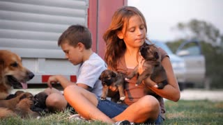 kids and pups dolly left