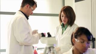 lab tech looks into microscope