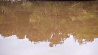 lazy cajun river tilt