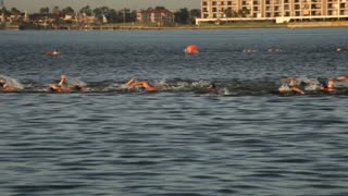 mens swimming triathalon