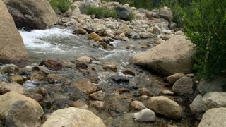 mountain stream in the rocky mountains