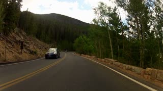 pov driving in the tree line