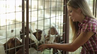 Pretty Girls with Cute Young Nubian Goats