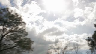 slow motion driving past trees and underpass with sun flares
