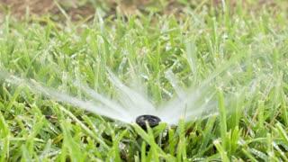 slow motion lawn sprinkler in grass