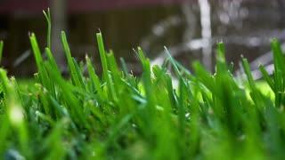 slow motion water sprinkler on grass.