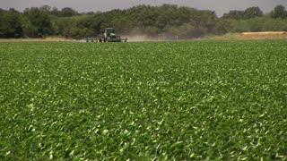 soybeans field with tractor in distance