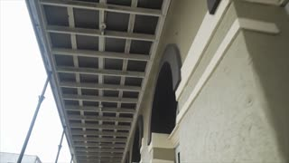 Stabilized Walking Footage Looking Up At The Architecture Of Historic Buildings 4k