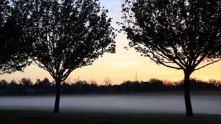 suburban foggy sunrise