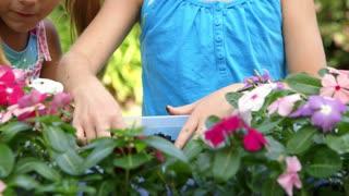 tilt up to little girls having fun planting flowers.