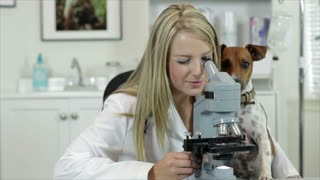 vet looking through microscope with dog watching