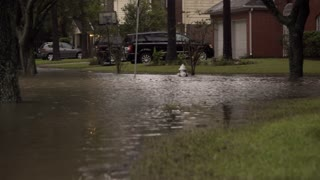 Circa August 2017 Houston Texas Pan Through A Flooded Suburban Neighborhood After Hurricane Harvey 4 K