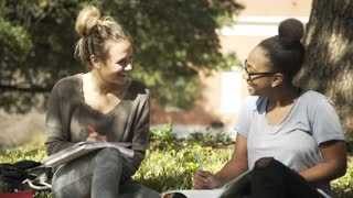 college students laughing while studying on the campus 4k