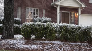 dolly right showing snow covered bushes in front of a home 4k