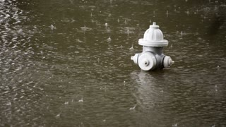 fireplug showing how flooded a street is during a hurricane 4k