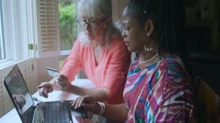 Lady friends use laptop to shop online