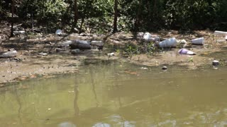 water pollution in a lake