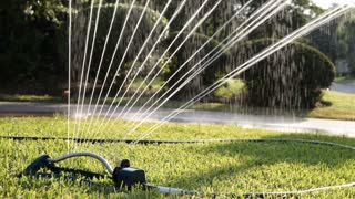 water sprinkler on a lawn