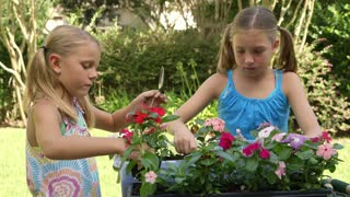wide shot little girls planting flowers.