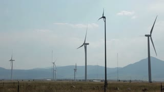 wide shot of wind turbines.
