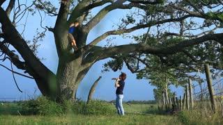 young boy climbing the tree