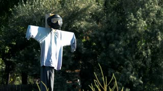 zombie scarecrow 4k