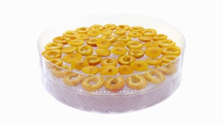 Time-lapse of drying apricot slices in dehydrating machine1x3, 4K format