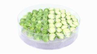 Time-lapse of drying Brussels sprouts 1x3 in UHD 4K format on white background
