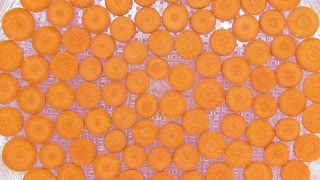 Time-lapse of drying (dehydrating) carrot slices in dehydrating machine 2b1, top view
