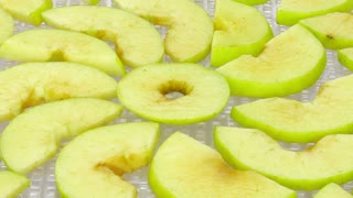 Time-lapse of drying (dehydrating) green apple slices in dehydrating machine 3b1