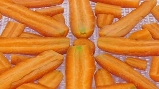 Time-lapse of drying (dehydrating) orange carrot vegetable slices in dehydration machine 3b1