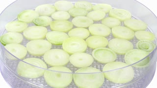 Time-lapse of drying (dehydrating) white onion (Allium cepa) vegetable in dehydrating machine 1a2, 4K format on white background