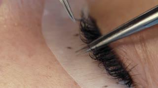 Eyelash extension on the female eye.