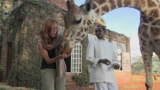 A giraffe gives a woman a kiss in Africa.