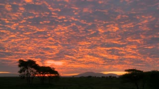A gorgeous red and orange sunset on the plains of Africa.