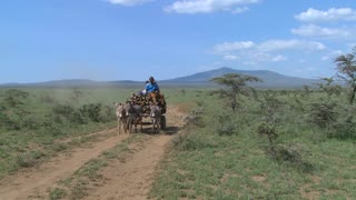 A horescart with a rider makes its way down a dirt road in East Africa.