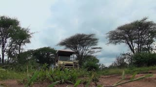 A safari vehicle drives directly over the camera in Africa.