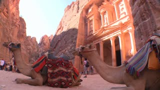 Camels sit in front of the Treasury building in the ancient Nabatean ruins of Petra, Jordan.