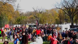 Huge crowds of protestors gather in Washington D.C. for a protest rally.