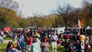Huge crowds of protestors gather on the mall in Washington D.C. for a protest rally.