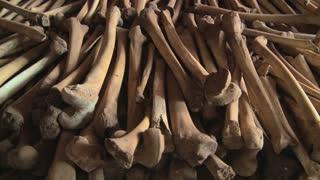 Hundreds of leg bones line the catacombs of a church following the Rwandan genocide.
