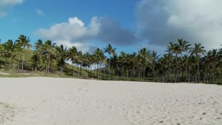 Pan across a nearly perfect white sand beach with tropical palms in the distance.