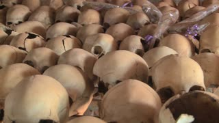 Pan across hundreds of skulls crushed during the genocide in Rwanda.