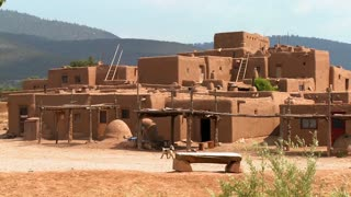 Stray dogs wander around the adobe Taos pueblo.