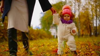 Close-up. Little girl makes the first steps in the autumn leaves and holding a mother's hand. Steadicam