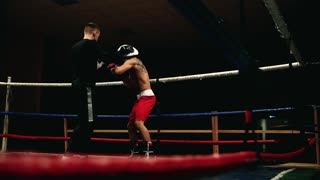 The boxer fulfills punches on the paws. Boxing training in the ring