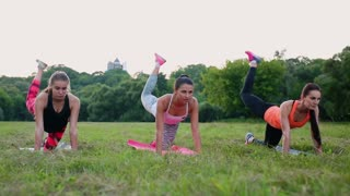 Training for perfect hips. Group of athletic young women in sportswear doing physical exercises with coach in green summer park outdoors, side view