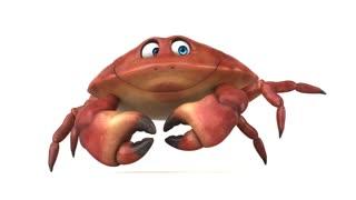 Fun crab walking - 3D Animation